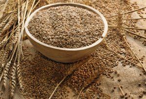 Korištenje pšenice za prehranu i liječenje poznato je od pamtivijeka.