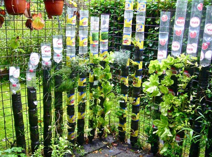 Organski vrt: Vertikalni vrt od plastičnih boca