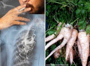 Rak pluća: Bokvica, iđirot i peršin - najbolji narodni lijekovi