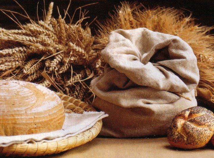 Ljekovita priroda: Integralne žitarice - amarant, ječam, proso, raž ...