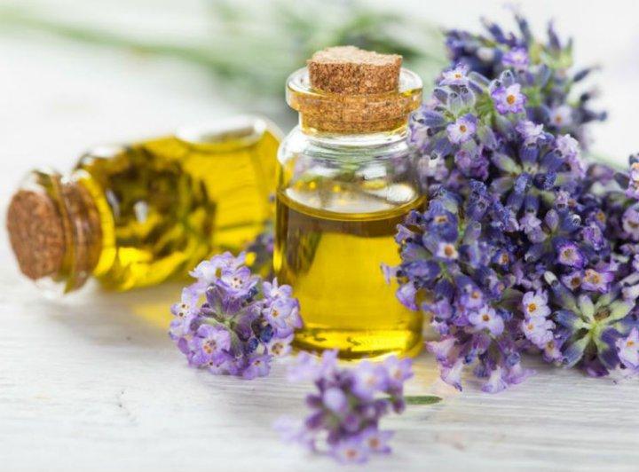Biljna ulja mirisni terapeuti - Ulje lavande